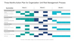 Three Months Action Plan For Organization Unit Risk Management Process Guidelines