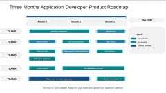 Three Months Application Developer Product Roadmap Pictures