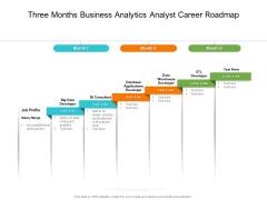 Three Months Business Analytics Analyst Career Roadmap Topics