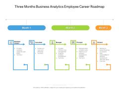 Three Months Business Analytics Employee Career Roadmap Formats