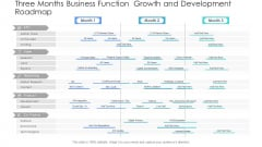 Three Months Business Function Growth And Development Roadmap Elements PDF