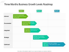 Three Months Business Growth Levels Roadmap Sample