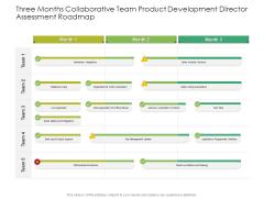 Three Months Collaborative Team Product Development Director Assessment Roadmap Inspiration
