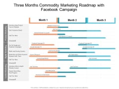 Three Months Commodity Marketing Roadmap With Facebook Campaign Portrait