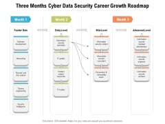 Three Months Cyber Data Security Career Growth Roadmap Diagrams