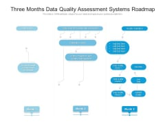 Three Months Data Quality Assessment Systems Roadmap Mockup