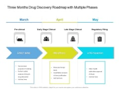 Three Months Drug Discovery Roadmap With Multiple Phases Demonstration