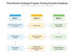 Three Months Employee Program Training Execution Roadmap Portrait