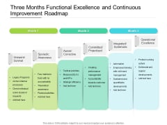 Three Months Functional Excellence And Continuous Improvement Roadmap Icons