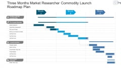 Three Months Market Researcher Commodity Launch Roadmap Plan Download