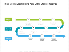 Three Months Organizational Agile Online Change Roadmap Ideas