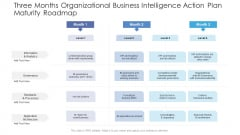 Three Months Organizational Business Intelligence Action Plan Maturity Roadmap Formats