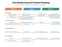 Three Months Research Flowchart Roadmap Topics