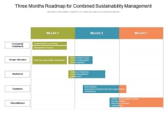 Three Months Roadmap For Combined Sustainability Management Information