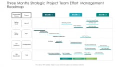 Three Months Strategic Project Team Effort Management Roadmap Download