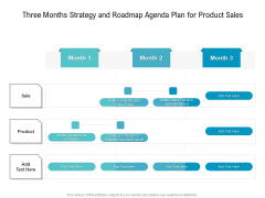 Three Months Strategy And Roadmap Agenda Plan For Product Sales Background