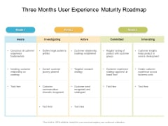 Three Months User Experience Maturity Roadmap Mockup