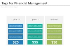 Three Options Tags For Financial Management Powerpoint Slides