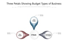 Three Petals Showing Budget Types Of Business Ppt PowerPoint Presentation Visual Aids Outline PDF