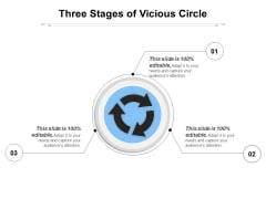 Three Stages Of Vicious Circle Ppt PowerPoint Presentation Professional Infographics PDF