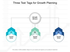 Three Text Tags For Growth Planning Ppt Powerpoint Presentation Styles Show