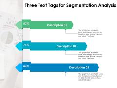 Three Text Tags For Segmentation Analysis Ppt PowerPoint Presentation Portfolio Good PDF