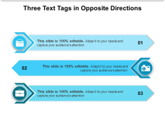 Three Text Tags In Opposite Directions Ppt PowerPoint Presentation Show Example Introduction PDF