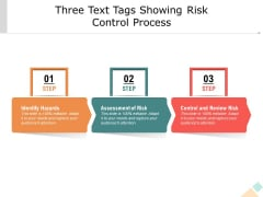 Three Text Tags Showing Risk Control Process Ppt PowerPoint Presentation Icon Background Images PDF