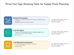 Three Text Tags Showing Tools For Supply Chain Planning Ppt PowerPoint Presentation Gallery Professional PDF