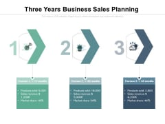 Three Years Business Sales Planning Ppt PowerPoint Presentation File Show PDF