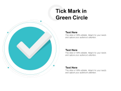 Tick Mark In Green Circle Ppt PowerPoint Presentation Ideas Example