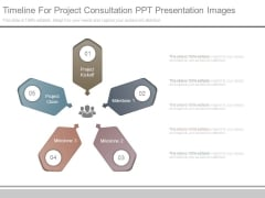 Timeline For Project Consultation Ppt Presentation Images