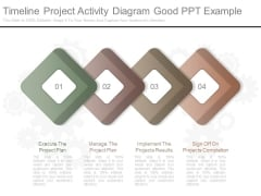 Timeline Project Activity Diagram Good Ppt Example