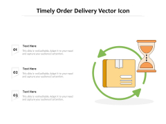 Timely Order Delivery Vector Icon Ppt PowerPoint Presentation Layouts Design Templates PDF