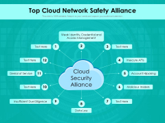 Top Cloud Network Safety Alliance Ppt PowerPoint Presentation Gallery File Formats PDF