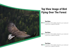 Top View Image Of Bird Flying Over The Forest Ppt PowerPoint Presentation Gallery Example PDF