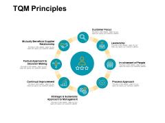 Tqm Principles Circular Portfolio Ppt PowerPoint Presentation Icon Layouts