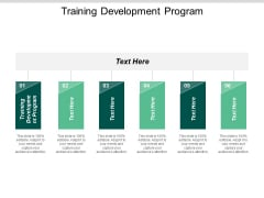 Training Development Program Ppt PowerPoint Presentation Professional Graphics Pictures Cpb