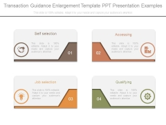 Transaction Guidance Enlargement Template Ppt Presentation Examples
