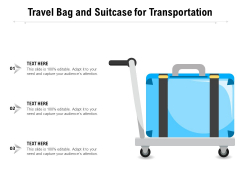 Travel Bag And Suitcase For Transportation Ppt PowerPoint Presentation Summary Clipart Images PDF