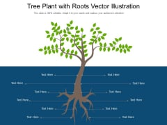 Tree Plant With Roots Vector Illustration Ppt PowerPoint Presentation Gallery Slide Download PDF