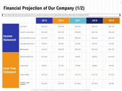 Trends And Emerging Areas In Merchant Acquiring Industry Financial Projection Of Our Company Net Diagrams PDF