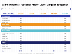 Trends Emerging Areas Acquiring Industry Quarterly Merchant Acquisition Product Launch Campaign Budget Plan Topics PDF
