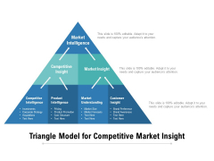 Triangle Model For Competitive Market Insight Ppt PowerPoint Presentation Gallery Example PDF