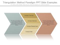 Triangulation Method Paradigm Ppt Slide Examples