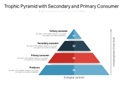 Trophic Pyramid With Secondary And Primary Consumer Ppt PowerPoint Presentation Infographic Template Slideshow PDF