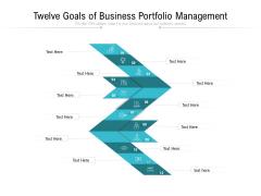 Twelve Goals Of Business Portfolio Management Ppt PowerPoint Presentation Gallery Show PDF