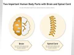 Two Important Human Body Parts With Brain And Spinal Cord Ppt PowerPoint Presentation Gallery Summary PDF