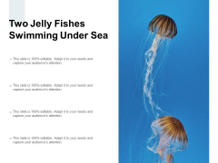 Two Jelly Fishes Swimming Under Sea Ppt PowerPoint Presentation Professional Portfolio