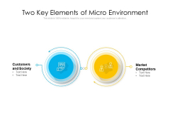 Two Key Elements Of Micro Environment Ppt PowerPoint Presentation Icon Inspiration PDF